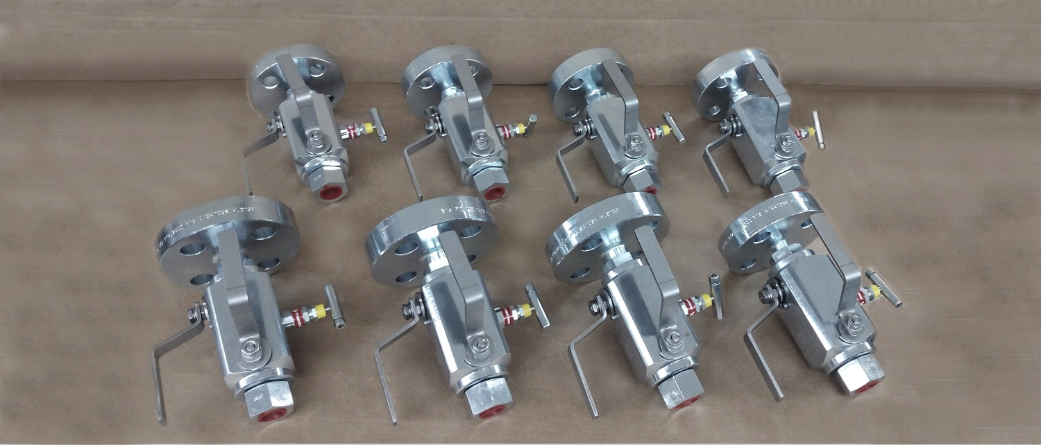 Integral valves for process interface, double block and bleed, flange x thread.